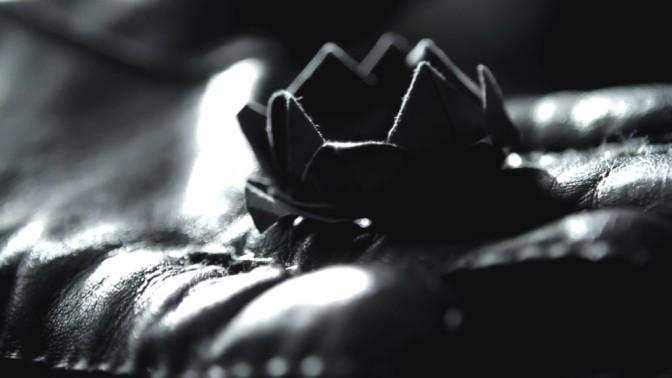 Black Lotus Party Favors!